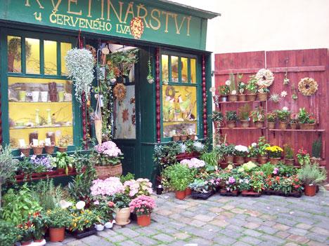 flower-store.jpg