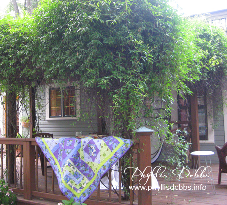 Asymmetrical Quilts book photography on jasmine covered deck
